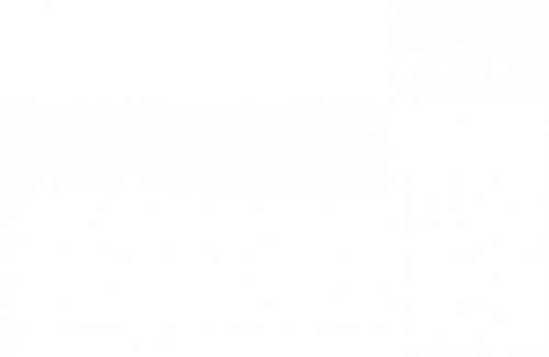o-service-prtnr-OracleCloudPlatBusAnalytics-NAS-wht-rgb